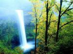 cennet-doga-manzara-yesillikler-selale-gur-orman