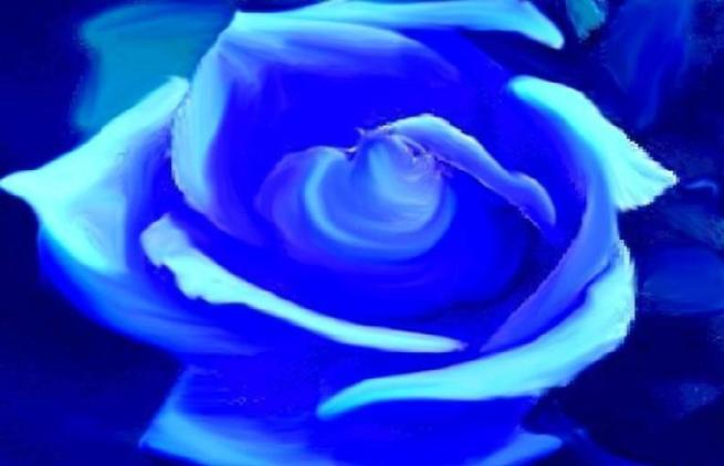 mavi-gul-resimleri-ggffrr